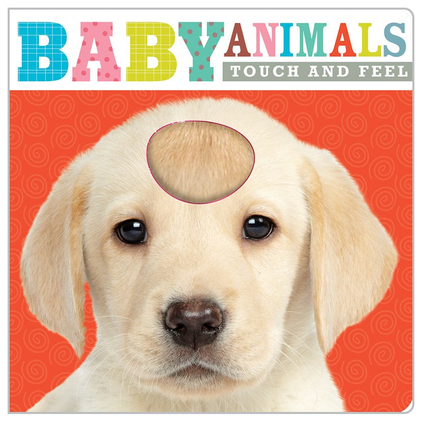 First Spread of Baby Animals (9781783931538)